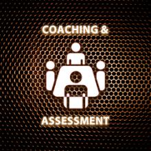 Coaching de Equipe, Executive Coaching & Assessment